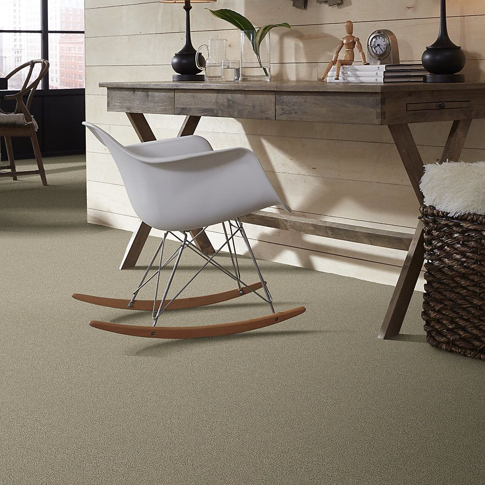 Shaw Floors Simply The Best Momentum II Net Plaza 140A_5E097