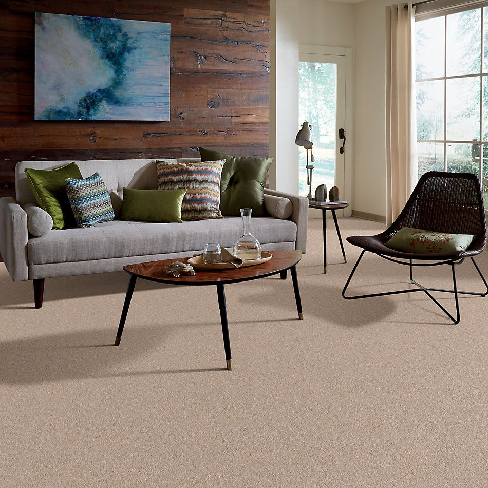 Shaw Floors Property Solutions Stonecrest Cashmere 14114_HF214