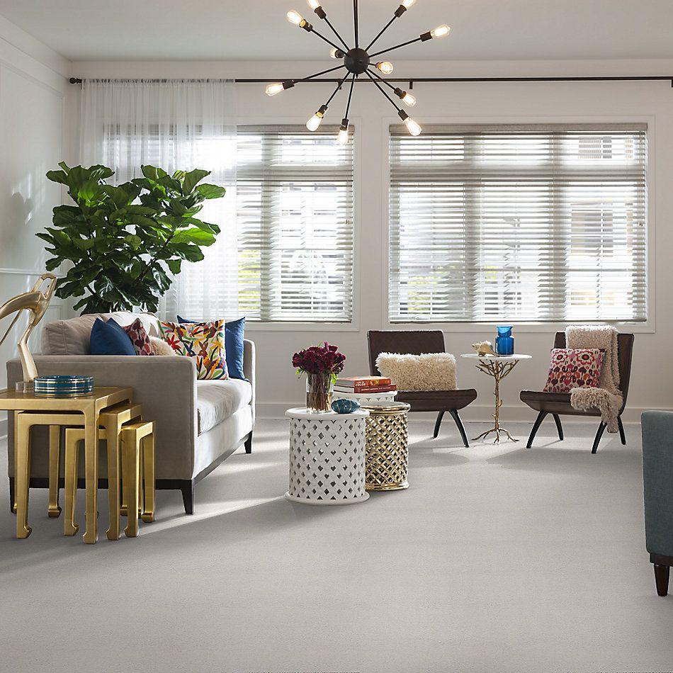 Shaw Floors SFA Fyc Ns I Net Neighborhood Bistro (s) 152S_5E018