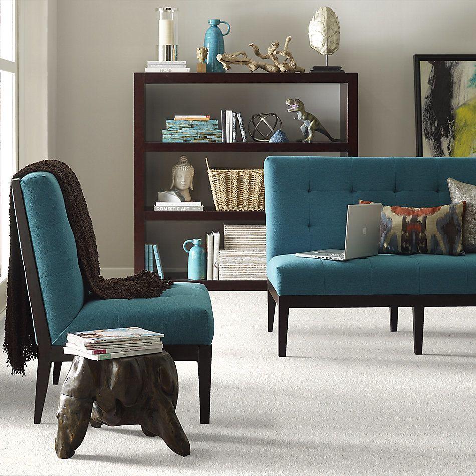 Shaw Floors SFA Fyc Tt Blue Net Neighborhood Bistro (t) 152T_5E023