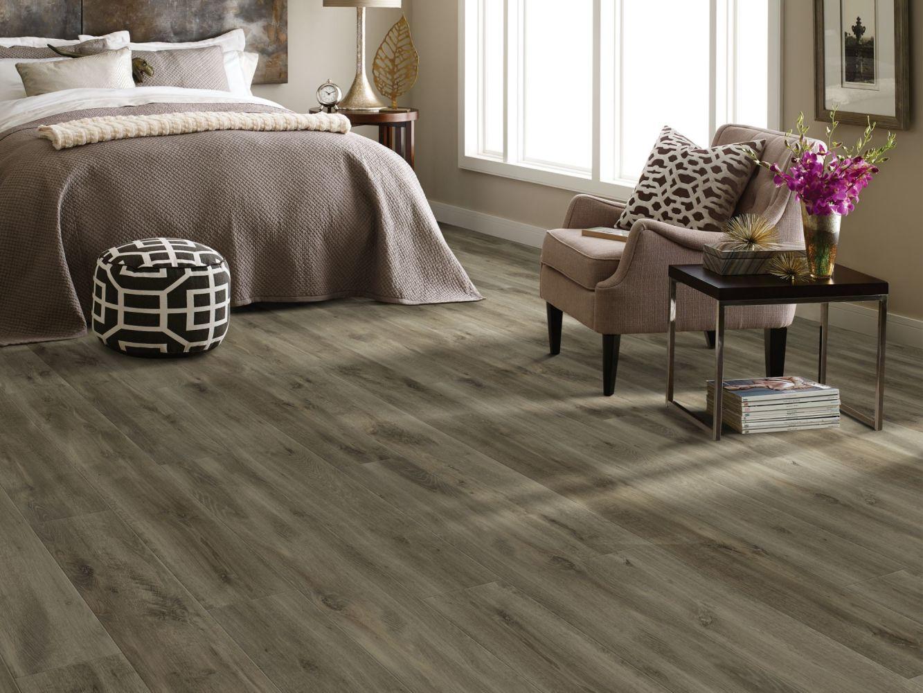 Shaw Floors Resilient Residential Allegiance+ Accent Ambassador Oak 05057_2008V