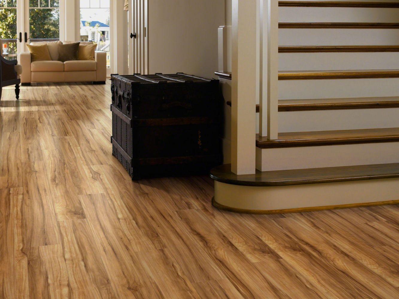 Shaw Floors Vinyl Residential Classico Plus Plank Frutta 00609_2426V