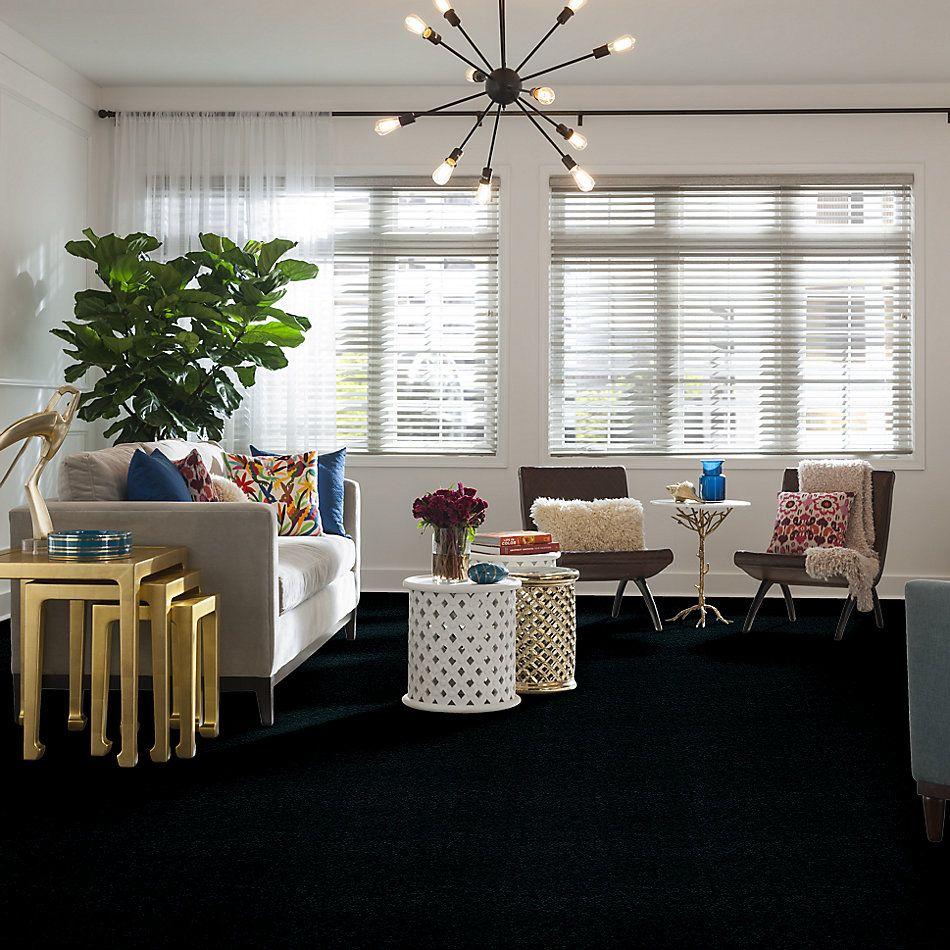 Shaw Floors Venture Emerald Lake 24338_13824