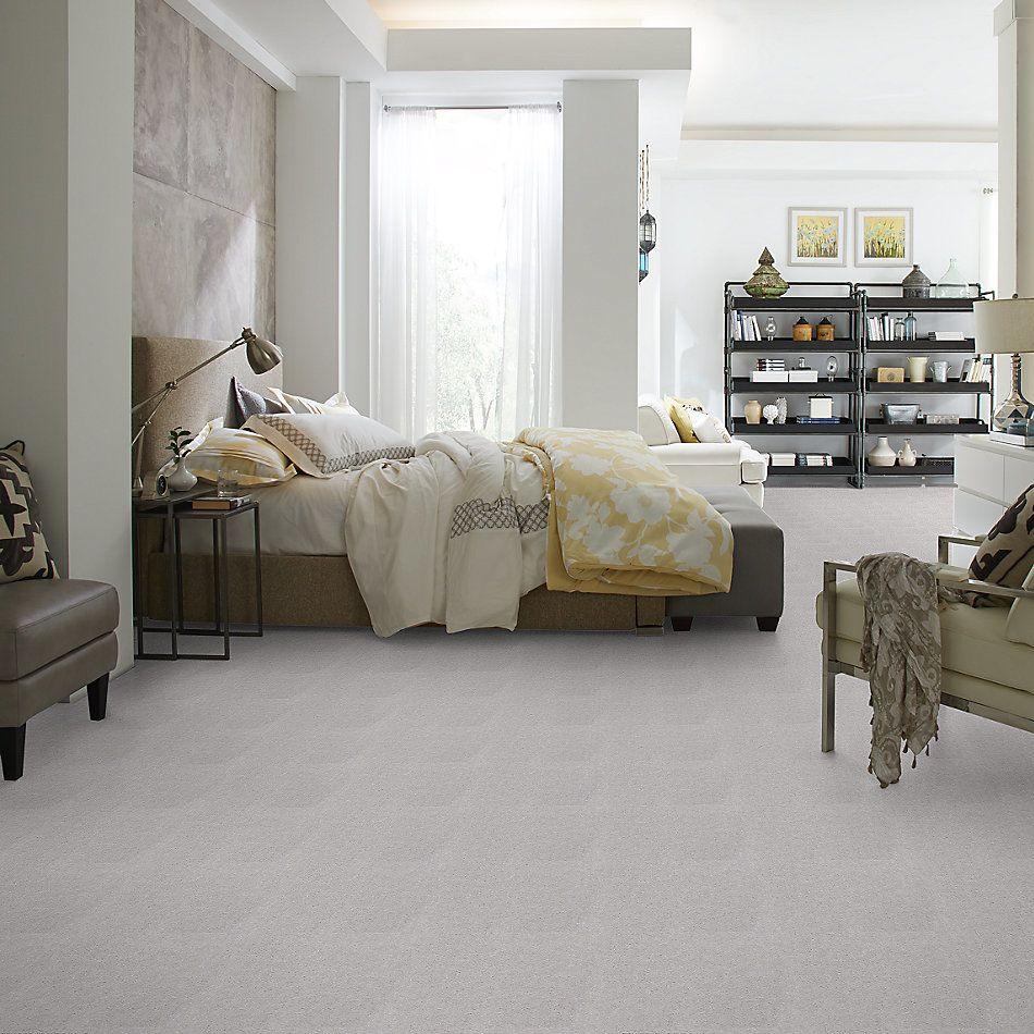 Shaw Floors Venture Sharkskin 24535_13824