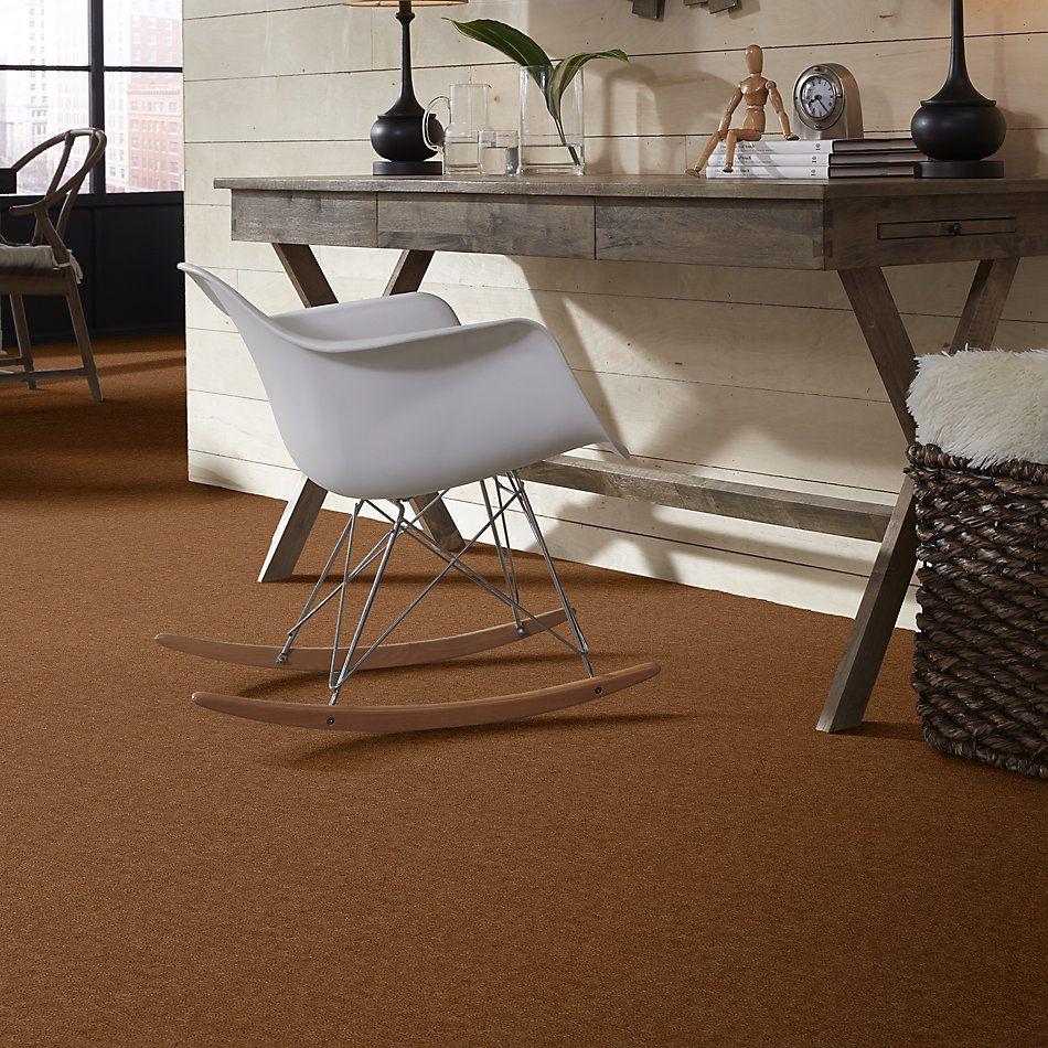 Shaw Floors Venture Ginger 24735_13824