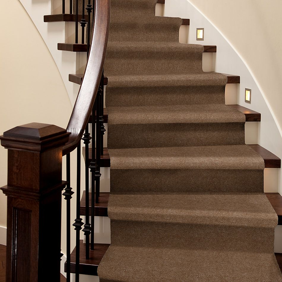 Shaw Floors Venture Molasses 24736_13824