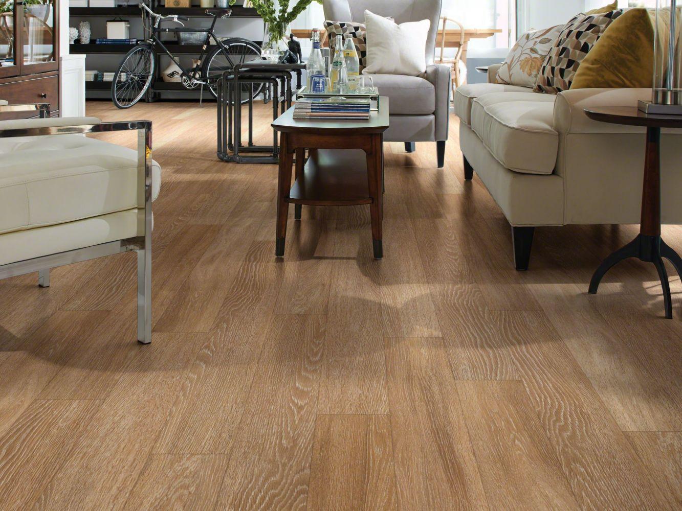Shaw Floors Resilient Residential Premio Plus Plank Duomo 00228_2490V