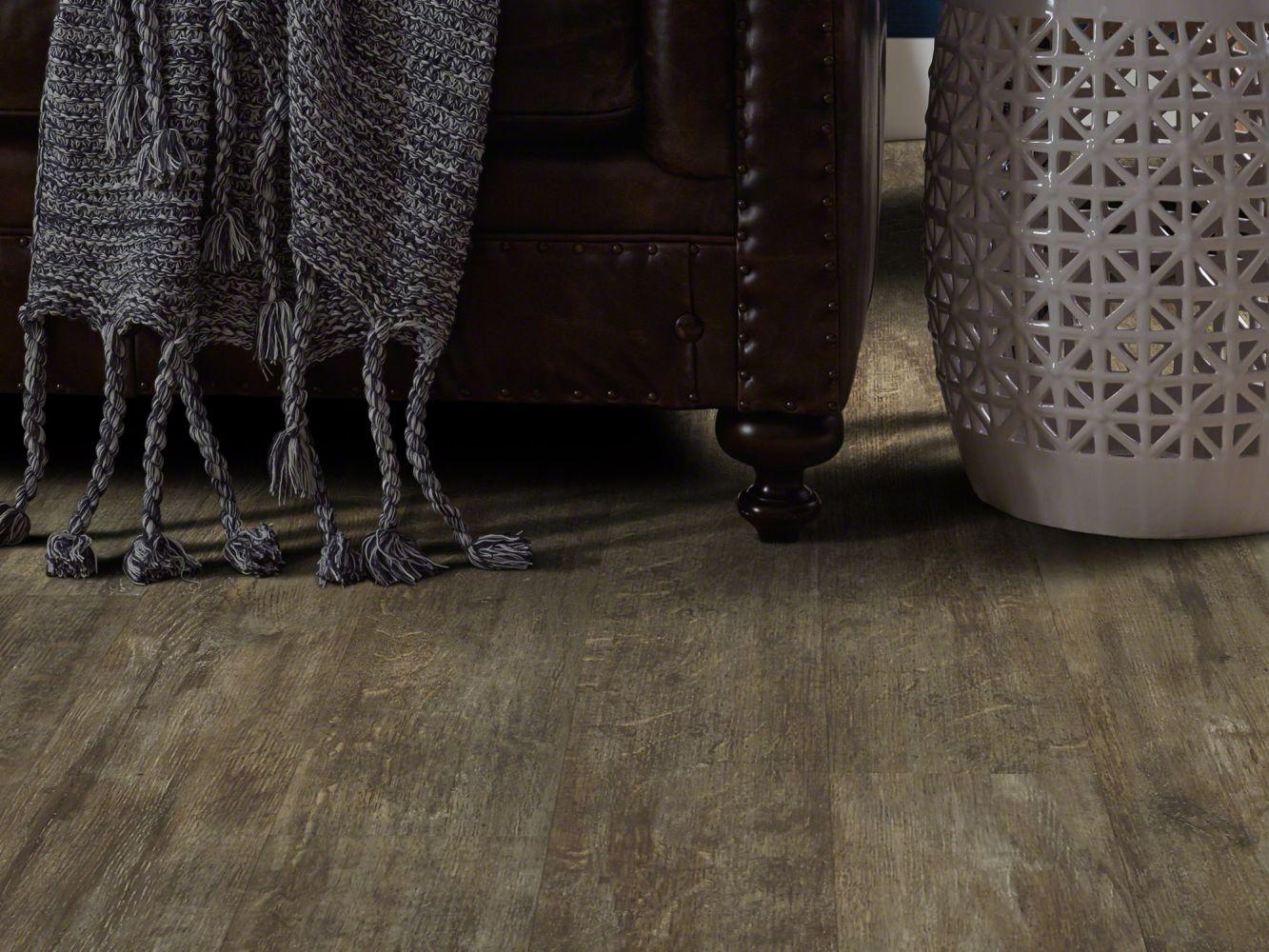 Shaw Floors Resilient Residential Valore Plus Plank Genoa 00773_2545V