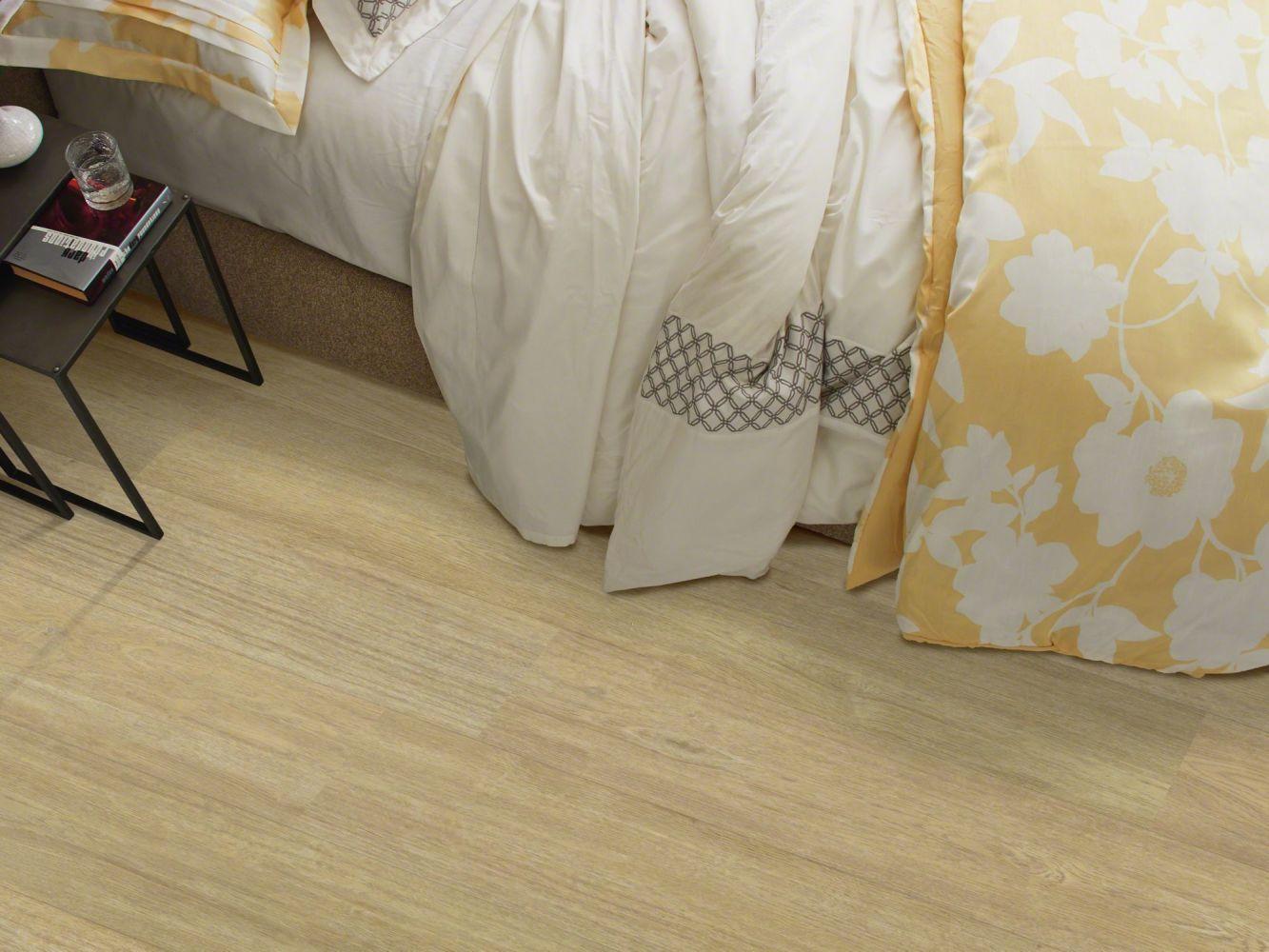 Shaw Floors Resilient Residential Alto Plus Plank Cervati 00205_2576V