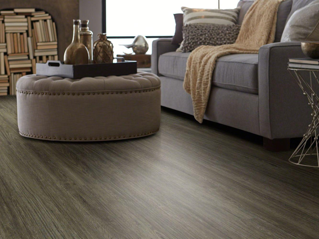 Shaw Floors Resilient Residential Alto Plus Plank Presanella 00503_2576V