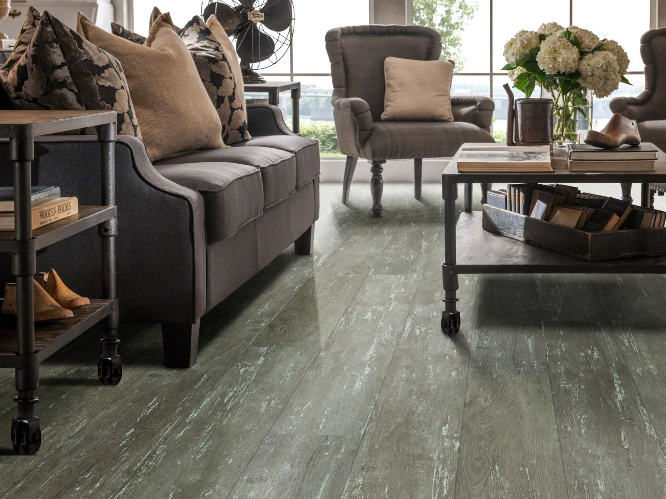 Shaw Floors Resilient Residential Alto Plus Plank Leone 00538_2576V