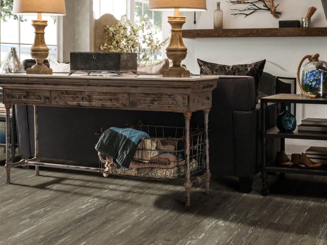 Shaw Floors Resilient Residential Alto Plus Plank Etna 00714_2576V