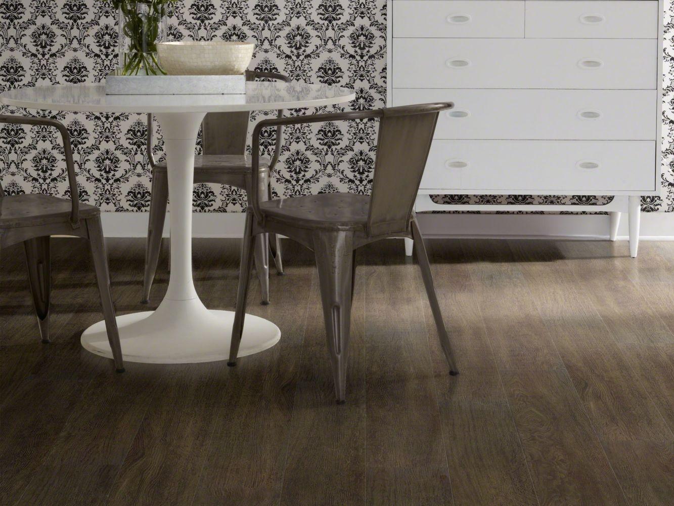 Shaw Floors Resilient Residential Alto Plus Plank Viso 00792_2576V
