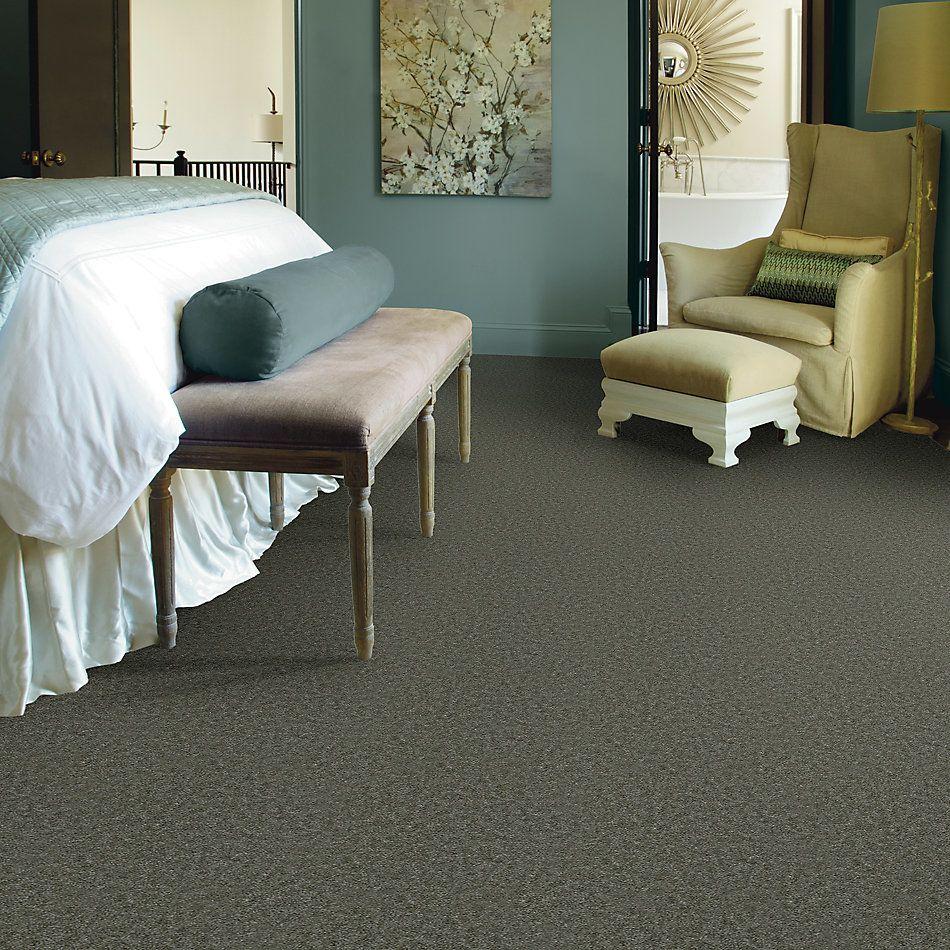 Shaw Floors Queen Patcraft Yukon Swan Weed 27340_Q0028