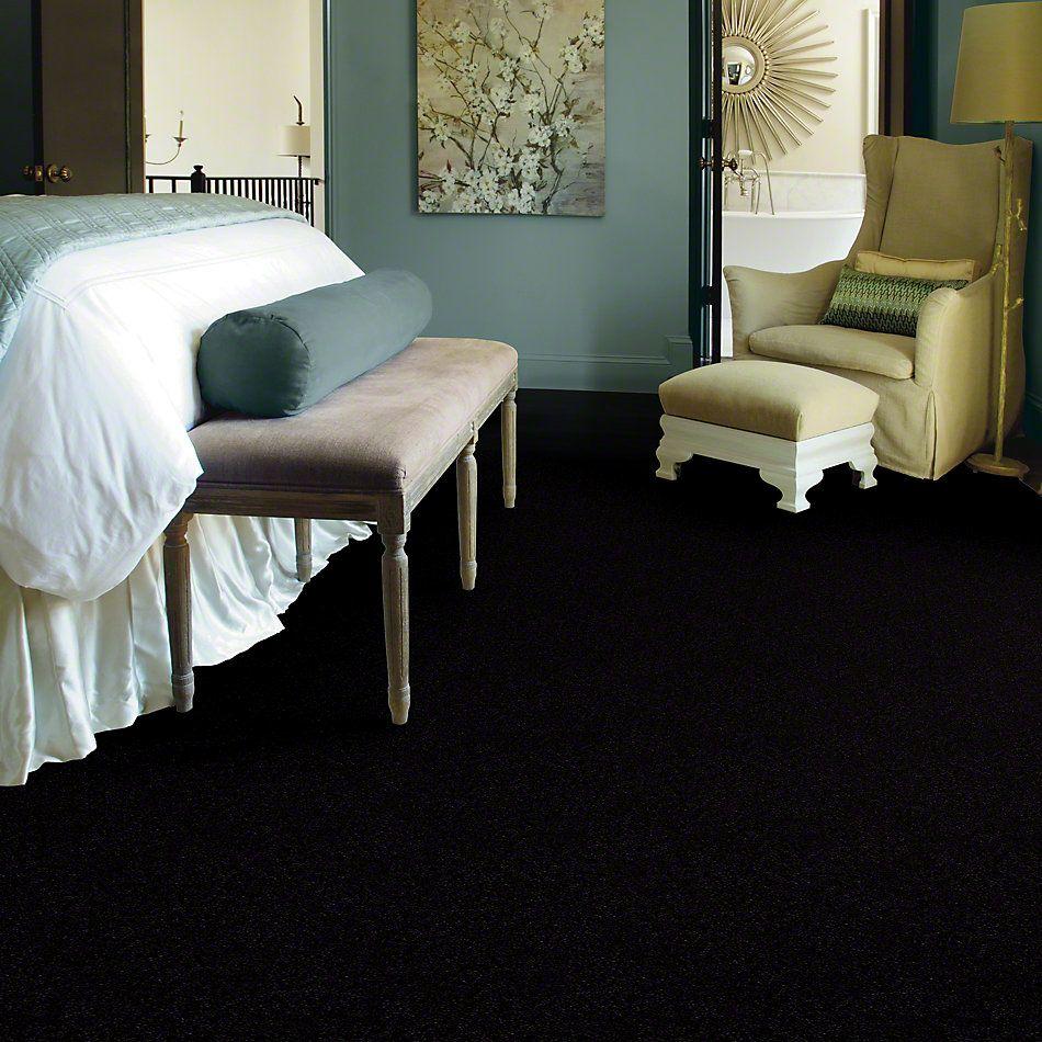 Shaw Floors Queen Bandit Ebony 27560_Q0027