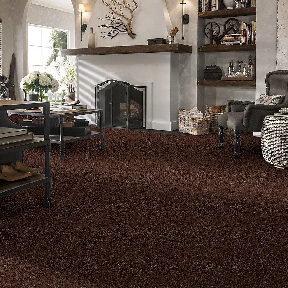 Shaw Floors Queen Bandit Brownstone 27704_Q0027