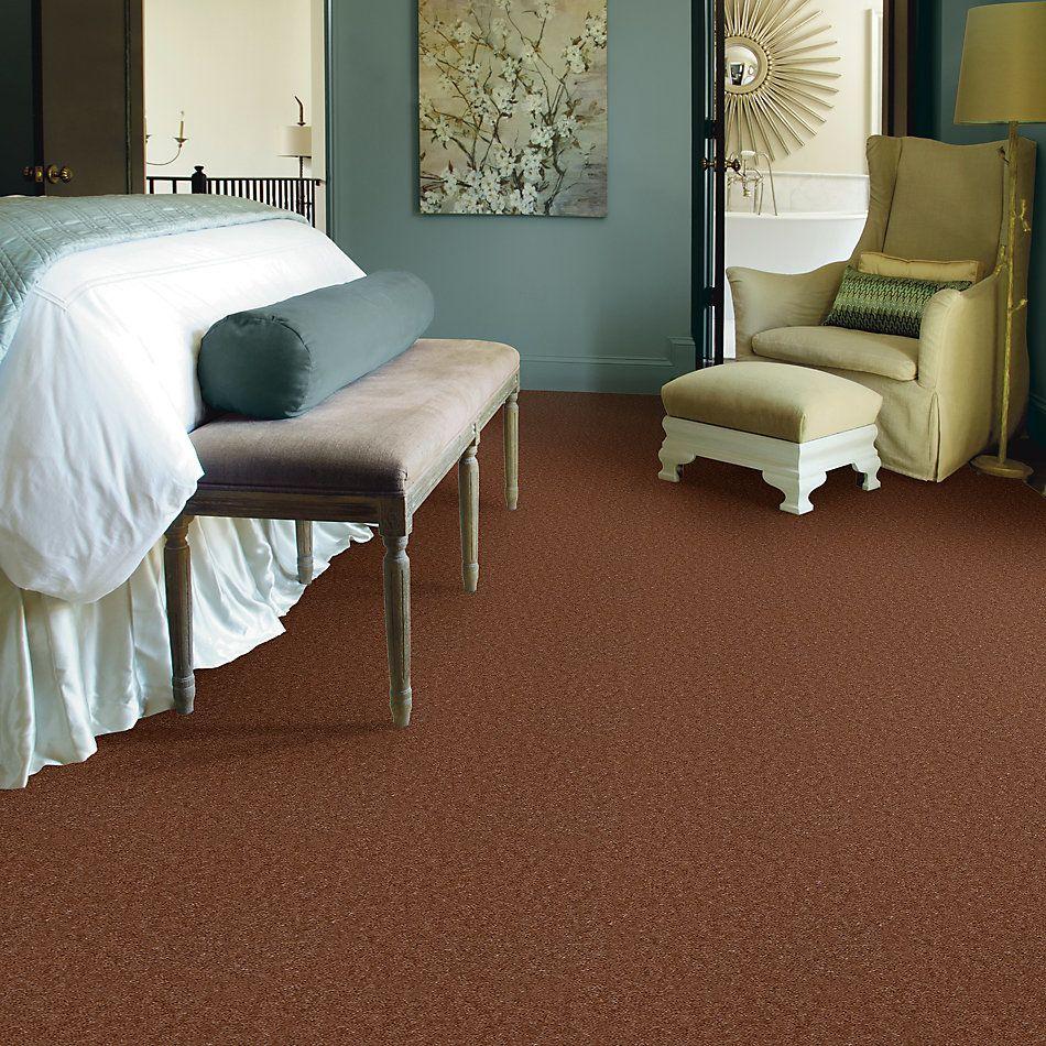Shaw Floors Queen Patcraft Yukon Kidskin 27760_Q0028
