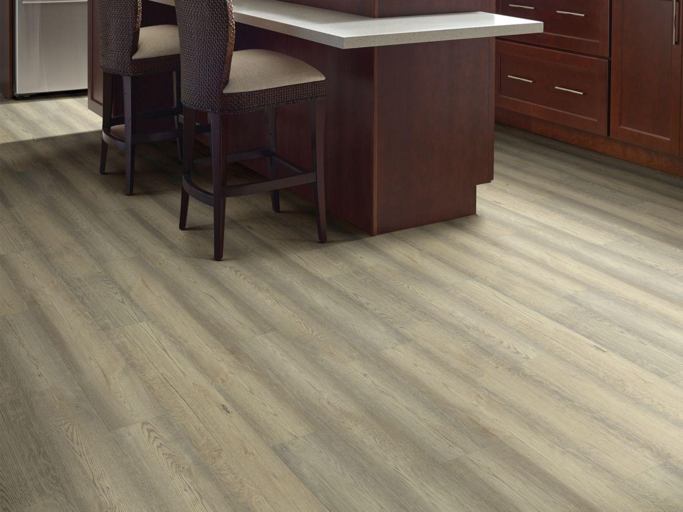 Shaw Floors Resilient Residential Wanderer Wayfinder 01068_3053V