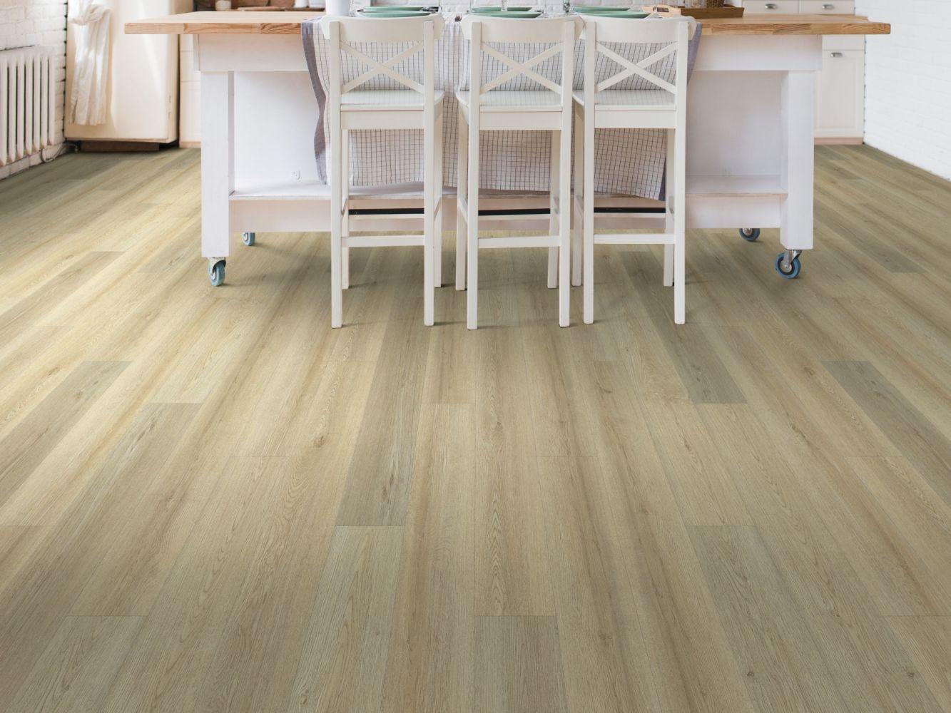 Shaw Floors Resilient Residential Wanderer Salt River 02028_3053V