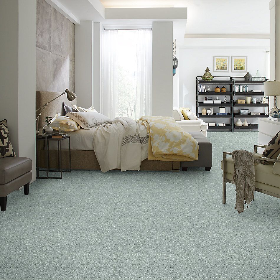 Shaw Floors SFA Fyc Tt Blue Net Distant Valley (t) 307T_5E023