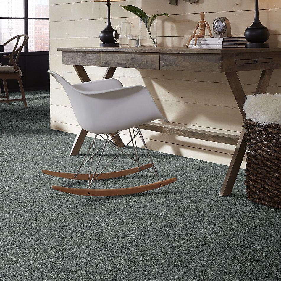Shaw Floors SFA Fyc Tt II Net Cottage Garden (t) 308T_5E022