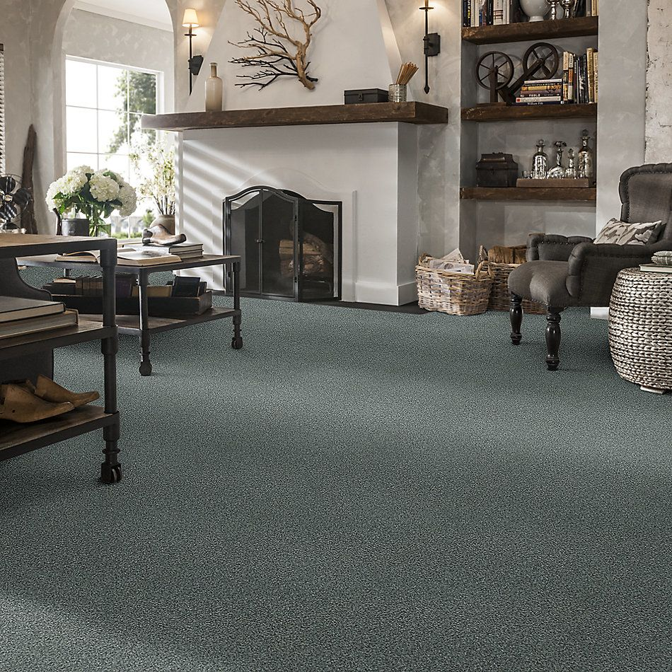 Shaw Floors SFA Fyc Tt Blue Net Cottage Garden (t) 308T_5E023
