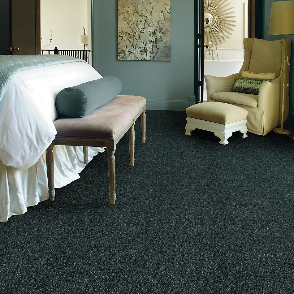 Shaw Floors SFA Fyc Tt Blue Net Hanging Vine (t) 309T_5E023