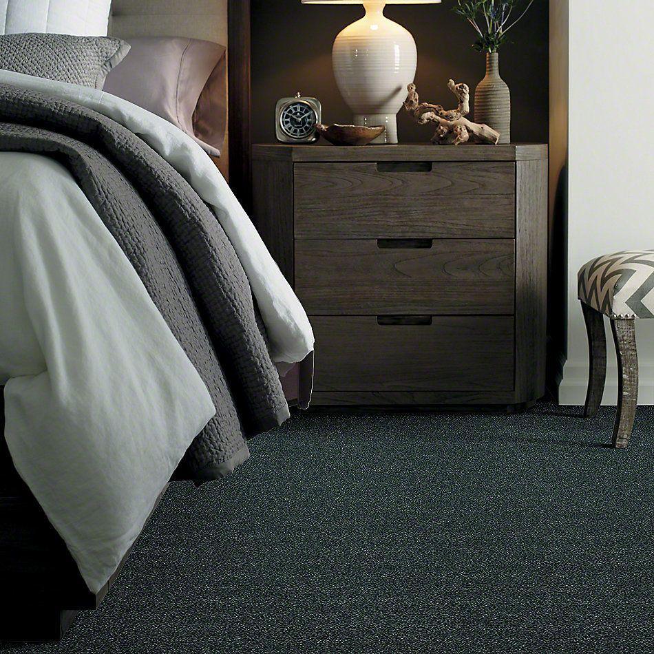 Shaw Floors SFA Find Your Comfort Tt Blue Hanging Vine (t) 309T_EA819