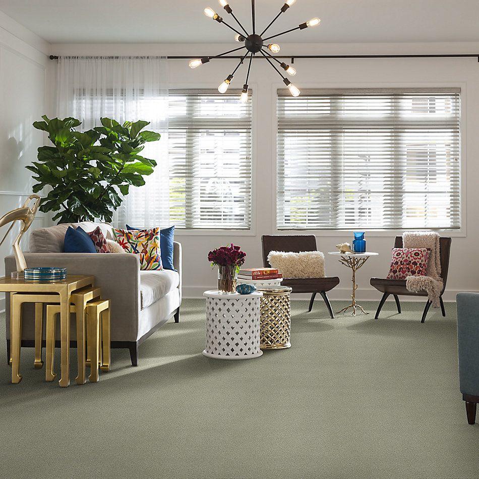 Shaw Floors SFA Fyc Ns I Net Willow Tree (s) 330S_5E018