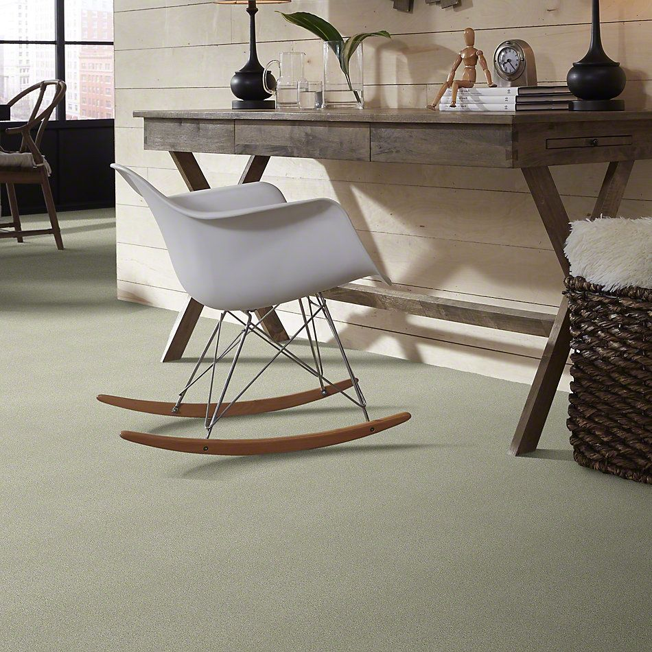 Shaw Floors SFA Find Your Comfort Ns I Willow Tree (s) 330S_EA814