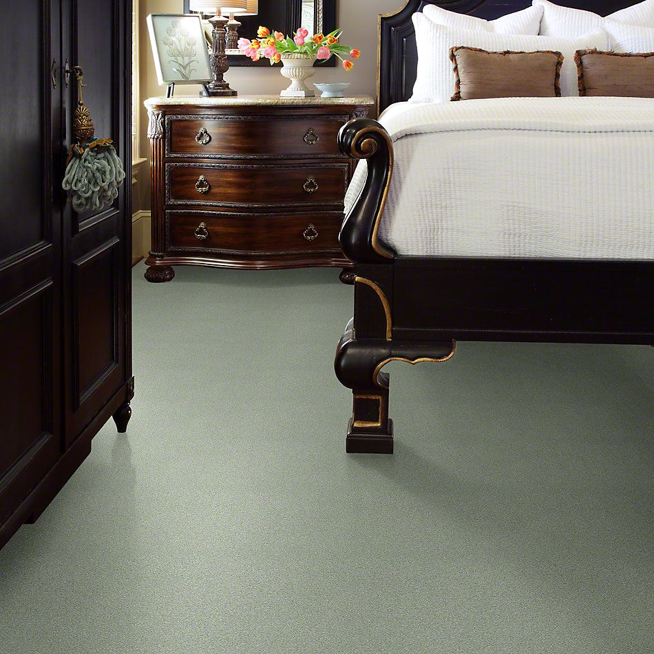 Shaw Floors SFA Find Your Comfort Ns Blue Willow Tree (s) 330S_EA816