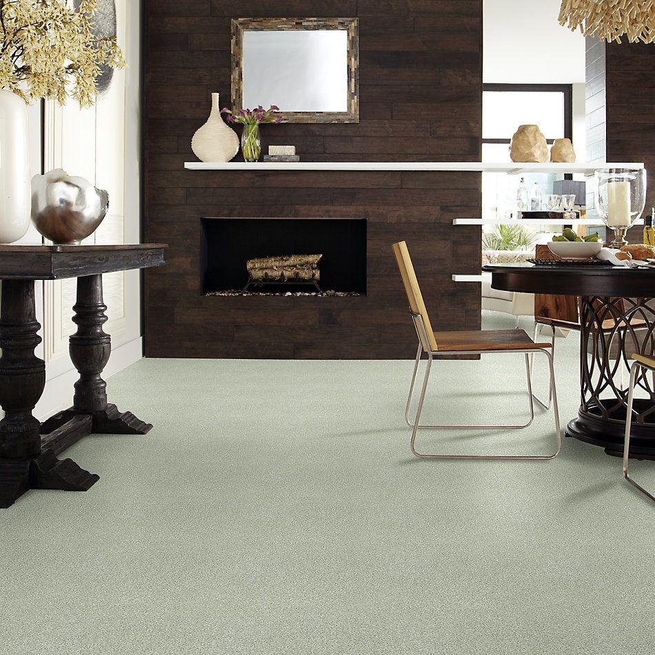 Shaw Floors SFA Fyc Tt Blue Net Willow Tree (t) 330T_5E023