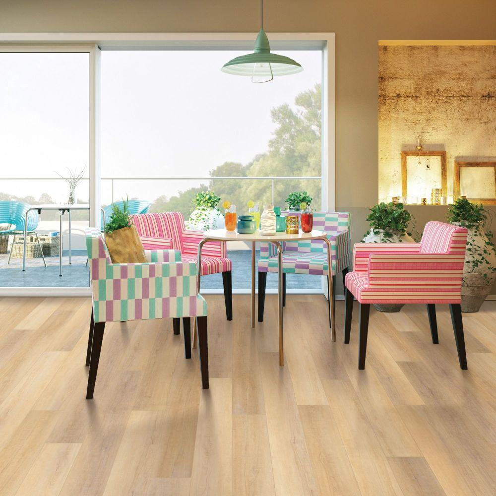 Shaw Floors Resilient Residential Enterprise 9″ Canterbury Elm 02093_345CT