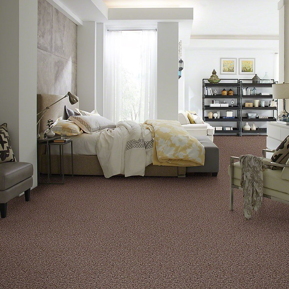 Shaw Floors SFA Sophisticated Space Cliffs 34711_0C107