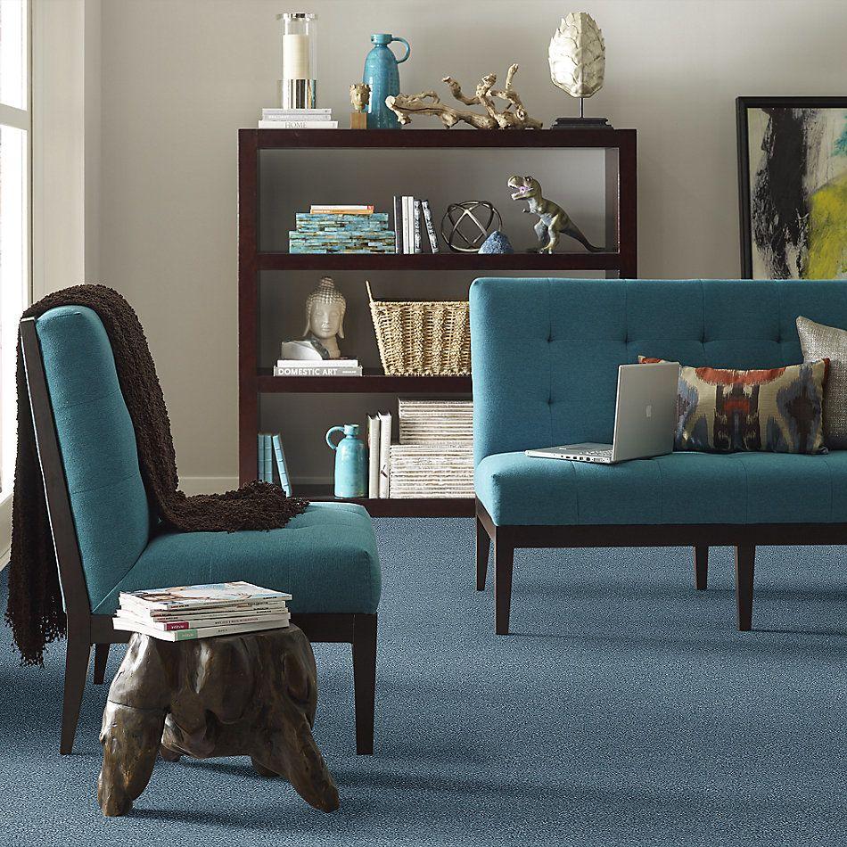 Shaw Floors SFA Fyc Tt Blue Net Lakeside Retreat (t) 413T_5E023