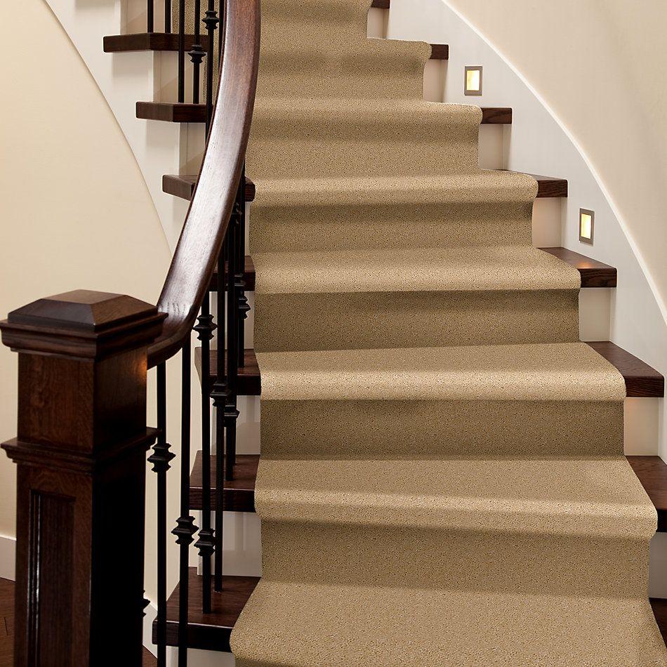 Shaw Floors Property Solutions Davenport II Rye 42124_HF142