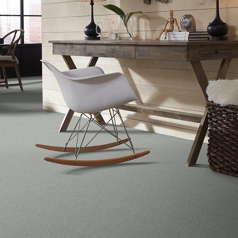 Shaw Floors SFA Fyc Ns II Net Water's Edge (s) 430S_5E019