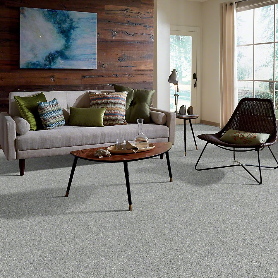 Shaw Floors SFA Find Your Comfort Tt I Water's Edge (t) 430T_EA817