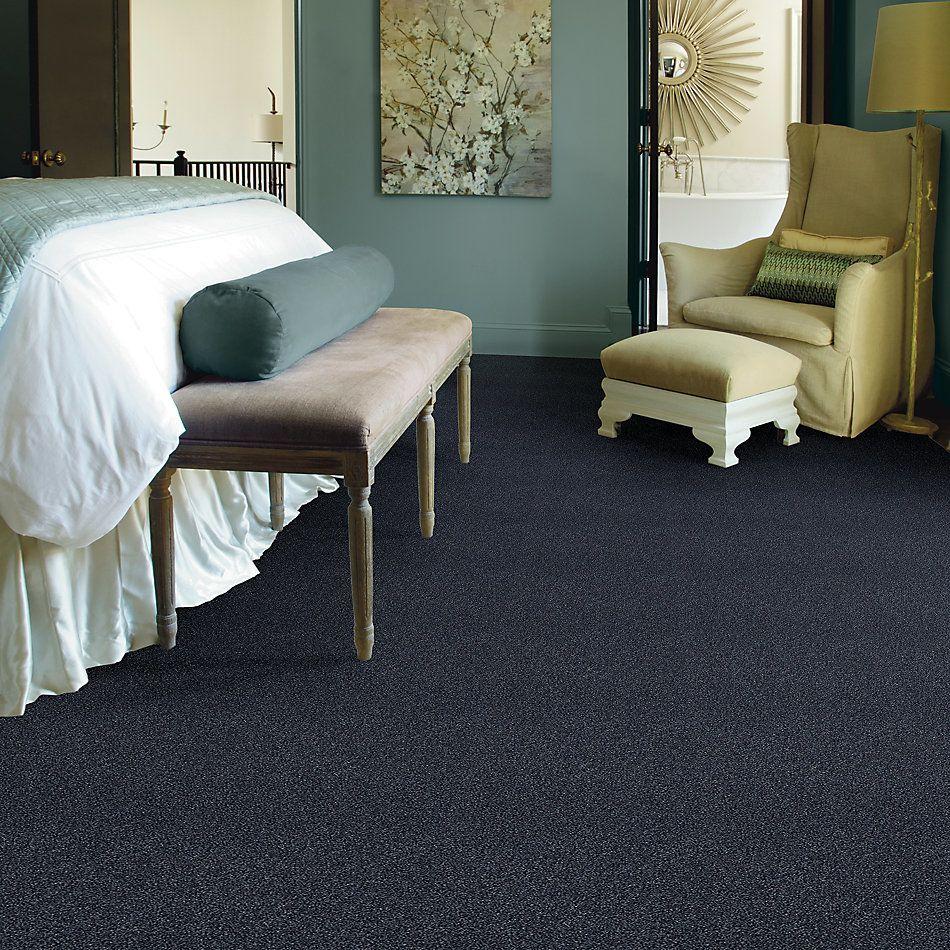 Shaw Floors SFA Fyc Tt Blue Net Star Gazing (t) 433T_5E023