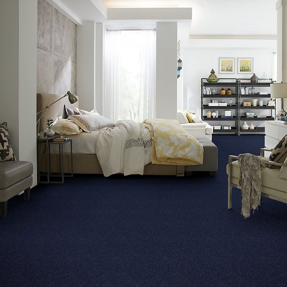 Shaw Floors SFA Fyc Ns I Net Sail Away (s) 436S_5E018