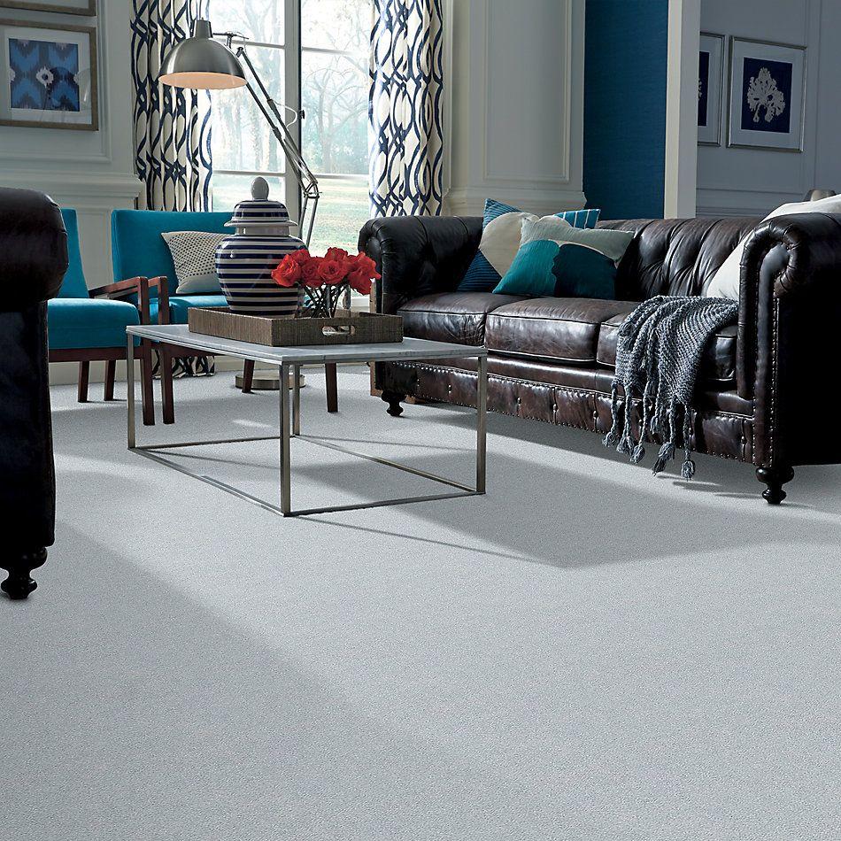 Shaw Floors SFA Fyc Ns II Net Winter Sky (s) 437S_5E019