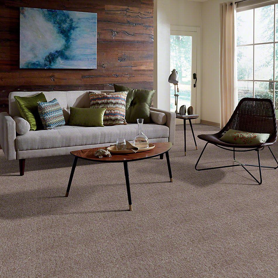 Philadelphia Commercial Winchester Desert Dune 49700_50247