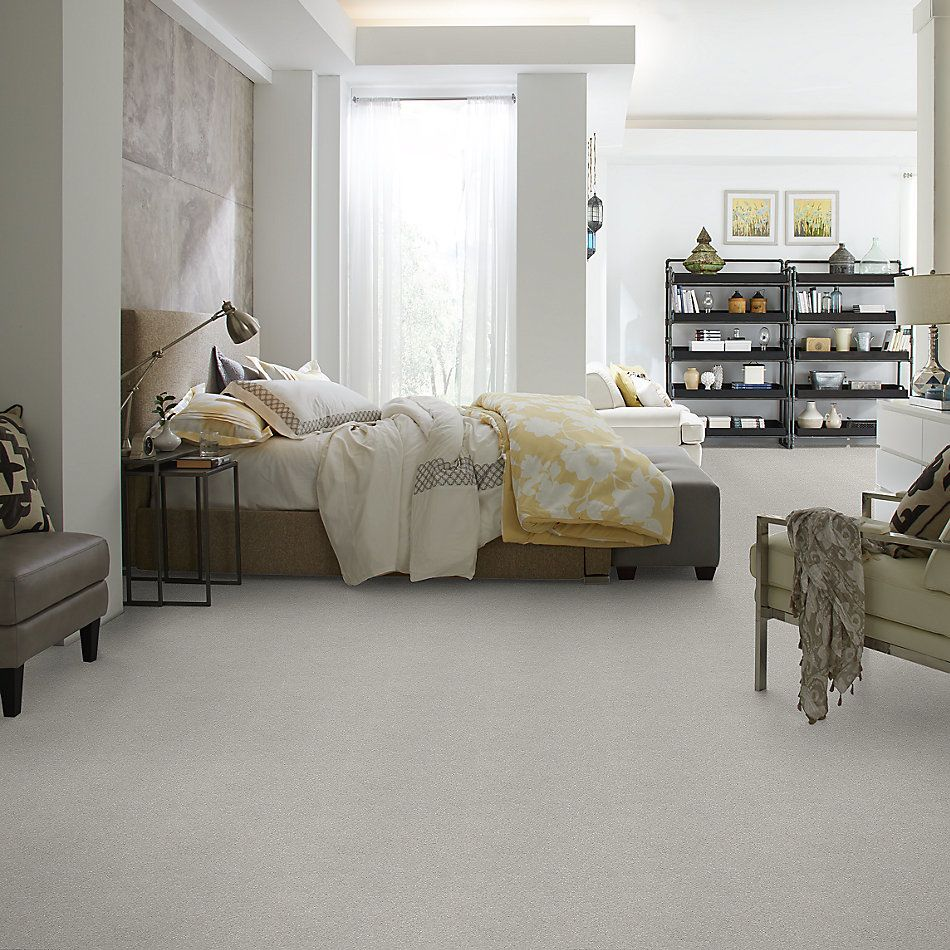 Shaw Floors Simply The Best Attainable Net Platinum 500S_5E094