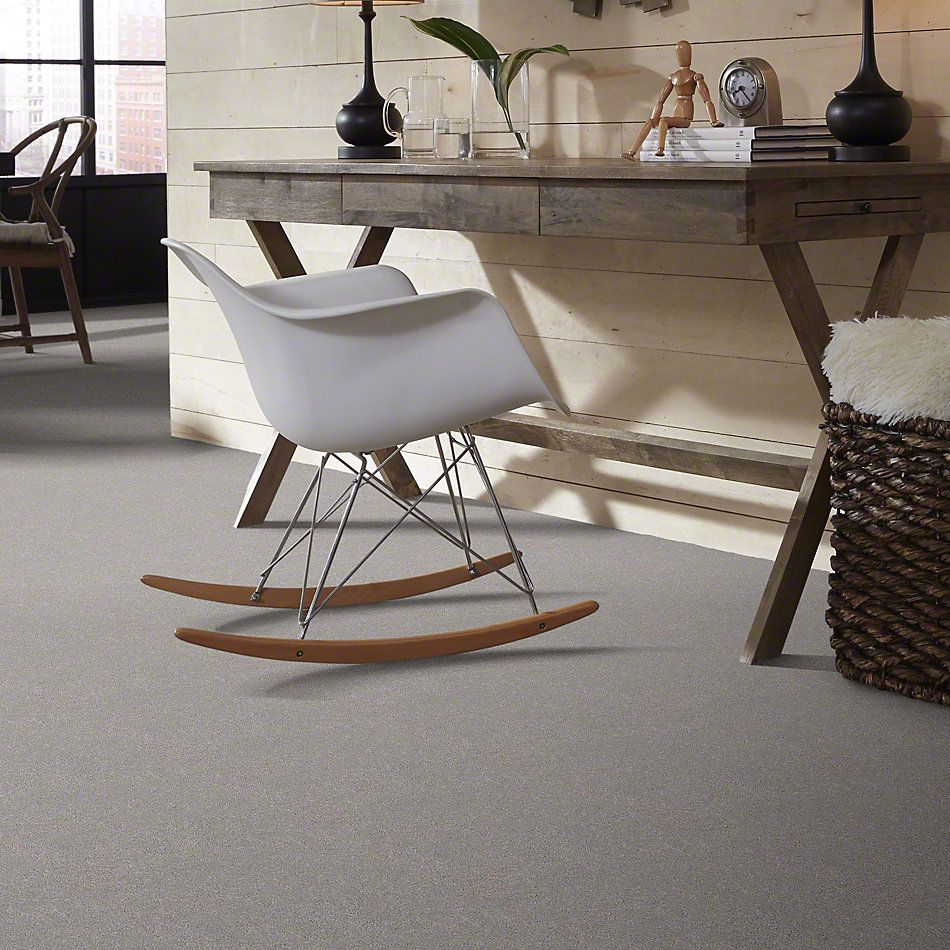 Shaw Floors Simply The Best Momentum II Subtle Touch 500S_E9968