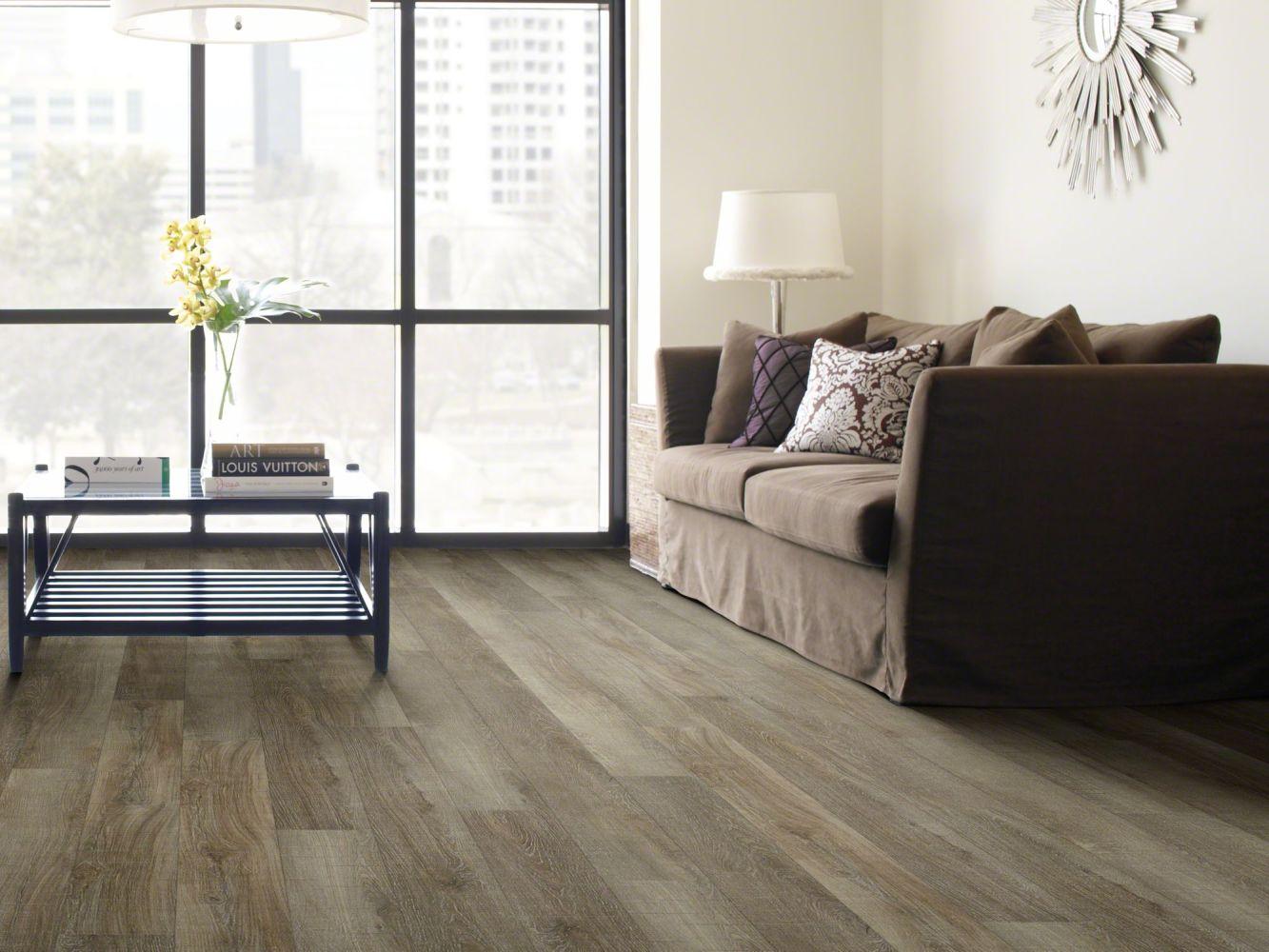 Shaw Floors SFA Casa Plus Molo 00125_503SA