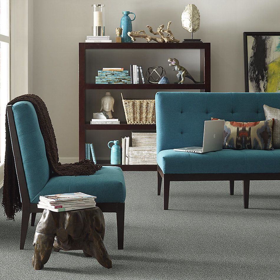 Shaw Floors Value Collections Attainable Solid Net Arctic Shadow 521T_5E094