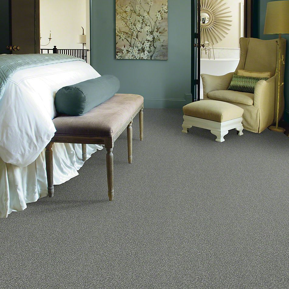 Shaw Floors Simply The Best Attainable Arctic Shadow 521T_E9965