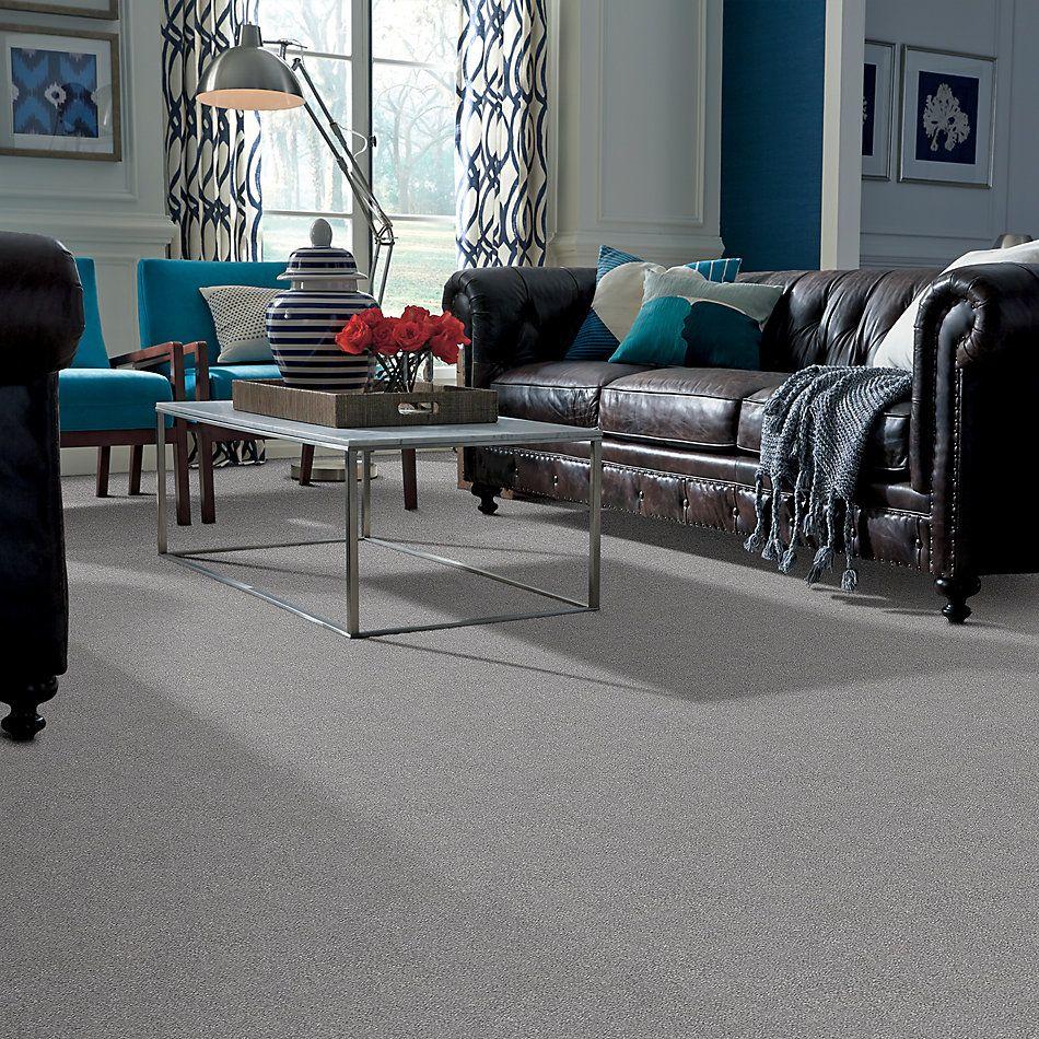 Shaw Floors SFA Fyc Ns II Net Misty Rain (s) 529S_5E019