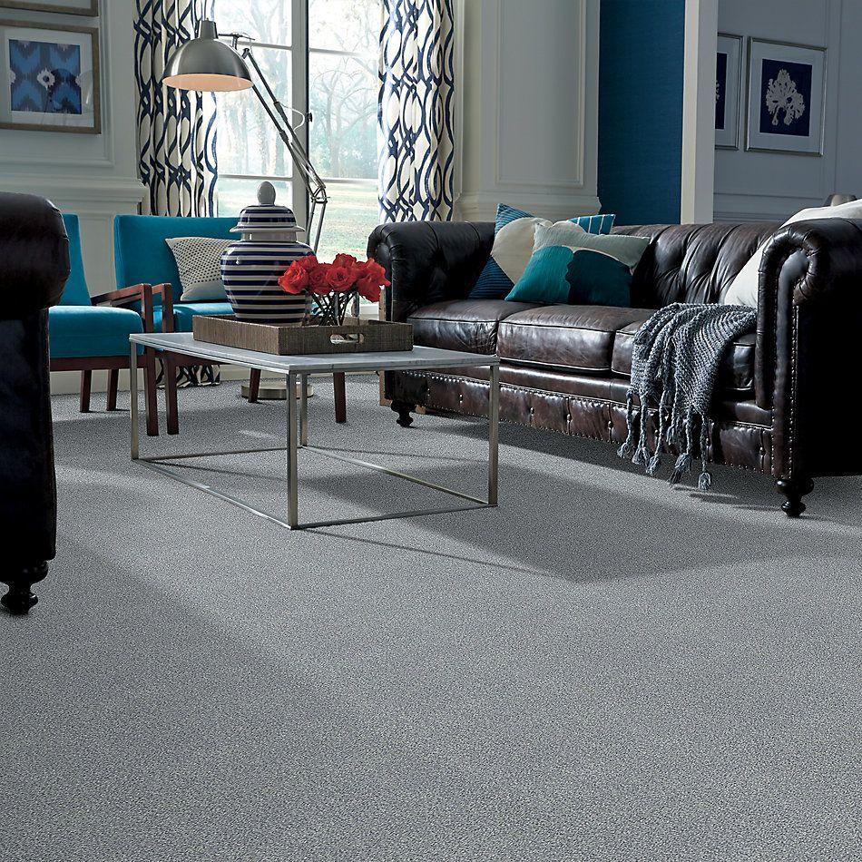 Shaw Floors SFA Fyc Tt Blue Net Misty Rain (t) 529T_5E023