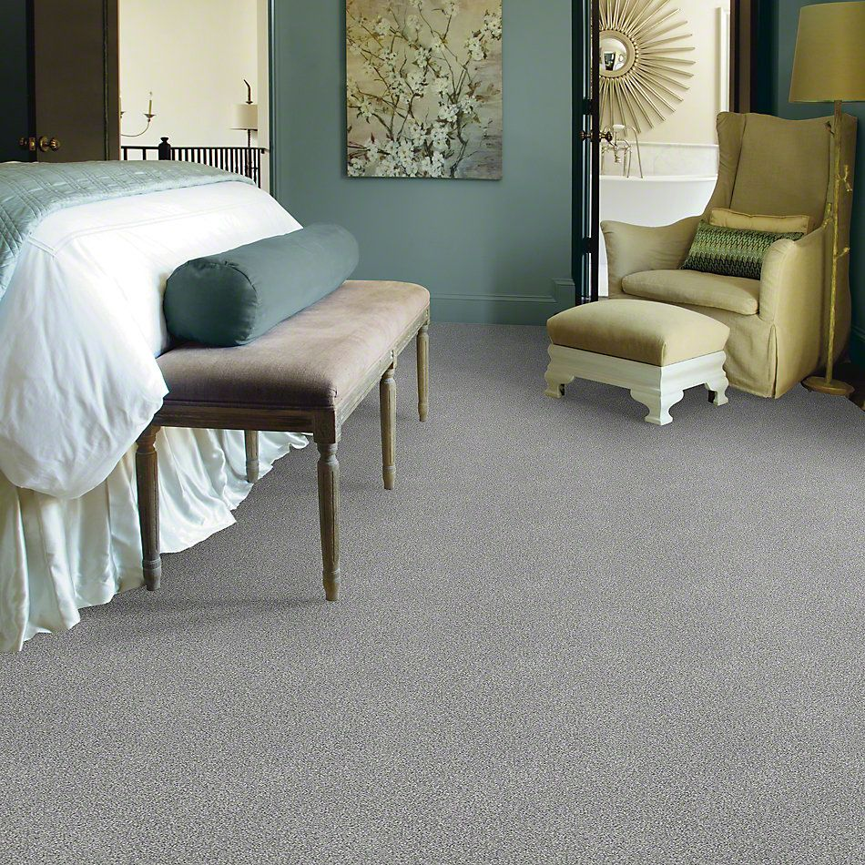 Shaw Floors SFA Find Your Comfort Tt I Misty Rain (t) 529T_EA817
